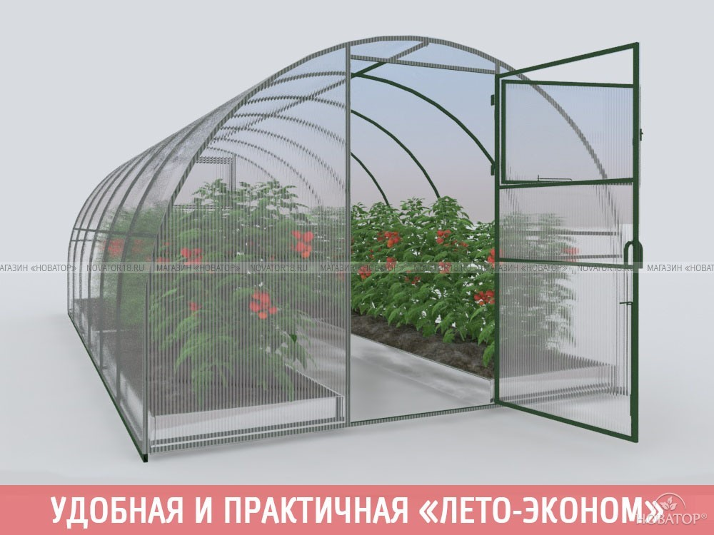 Теплица «Лето-эконом» с поликарбонатом «Эконом» 4 мм